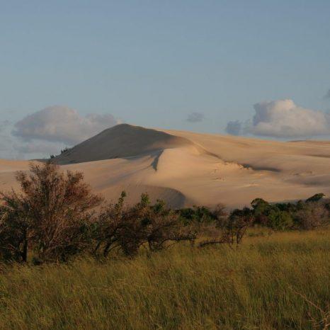 dunes-241901_1920